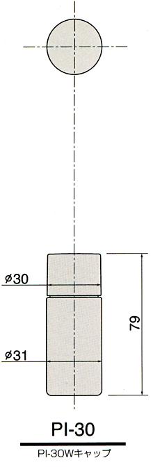 pi-30-z.jpg